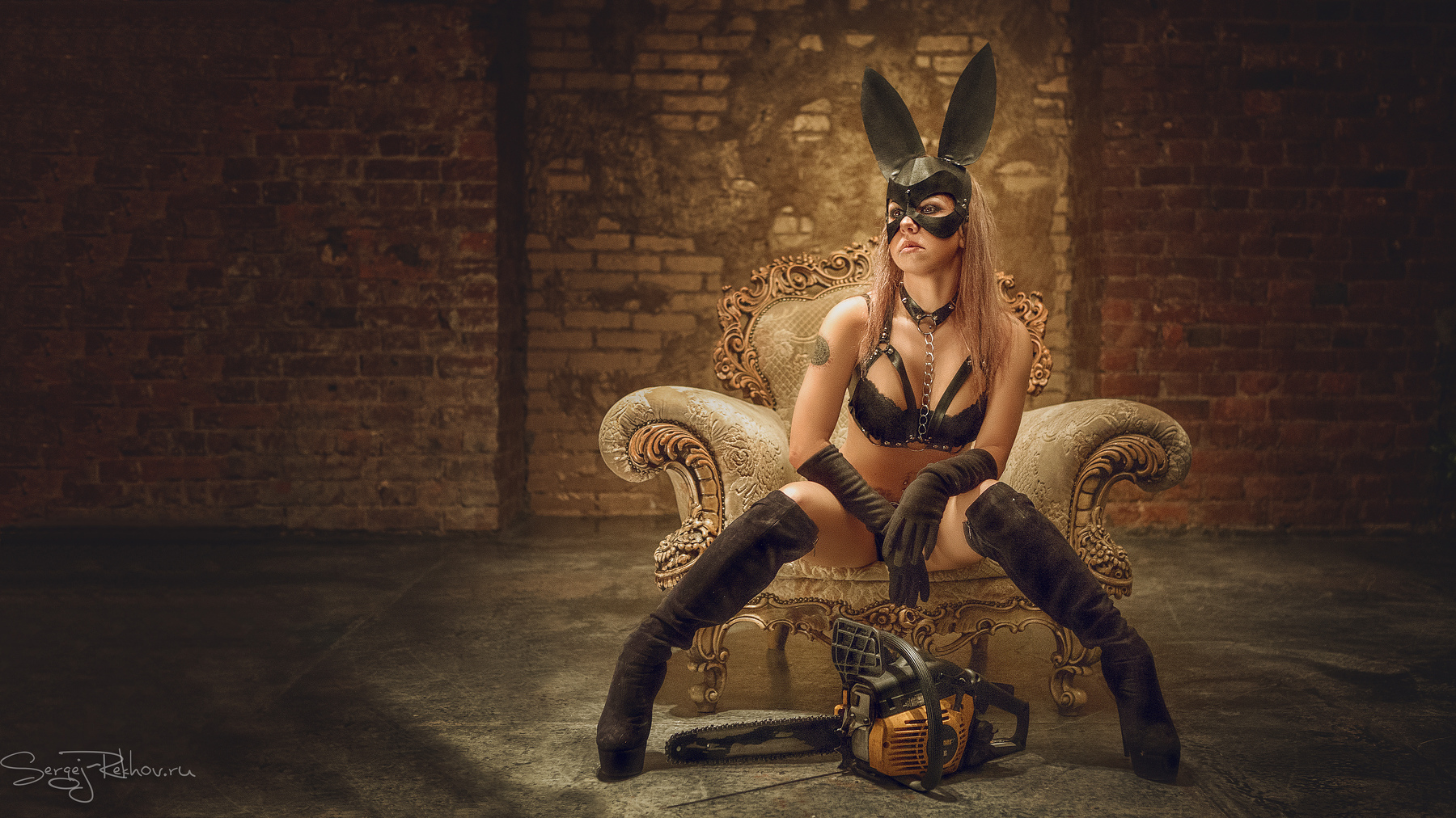 Playful Bunny / фотограф Рехов Сергей