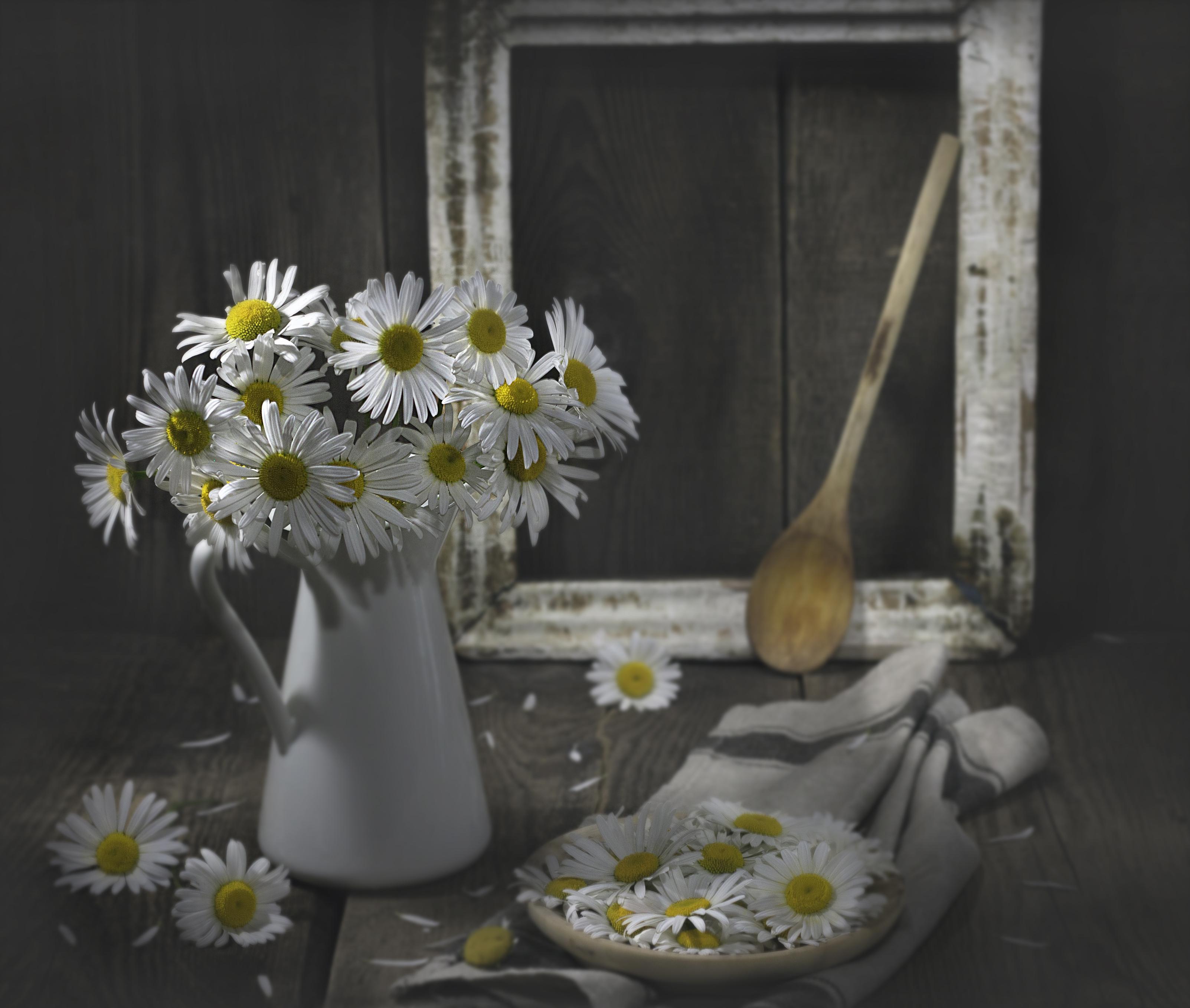 Цветы / фотограф Наталья Бочкарева