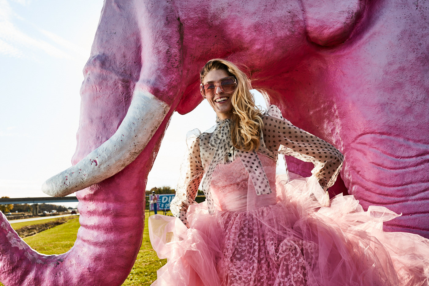Маленькие розовые слоны
