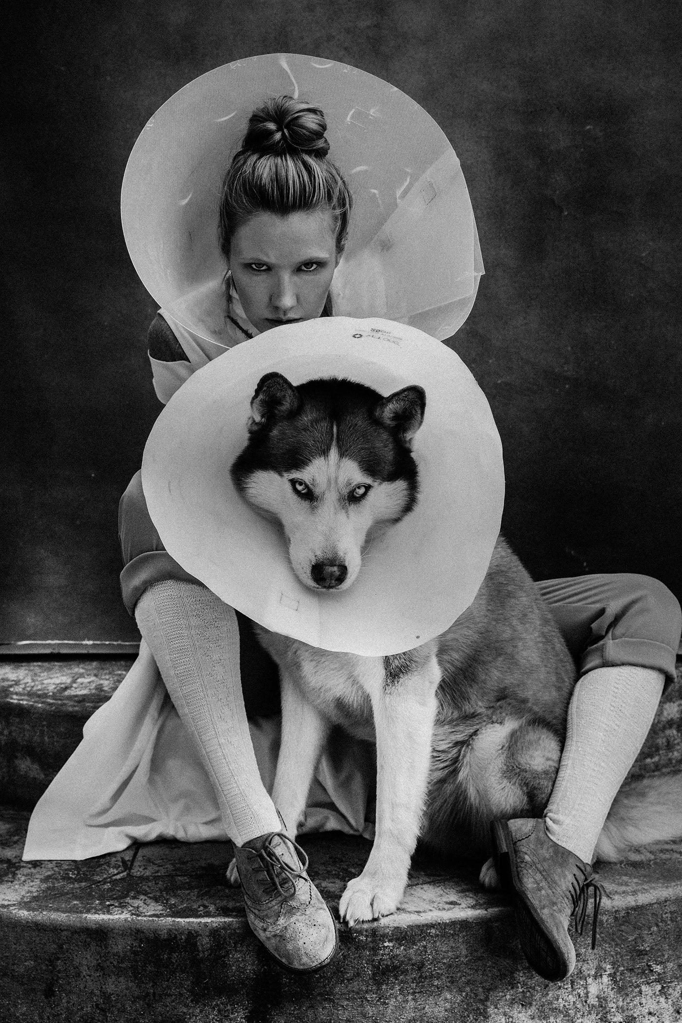 don't trap a wild wolf / фото Ekaterina Belinskaya