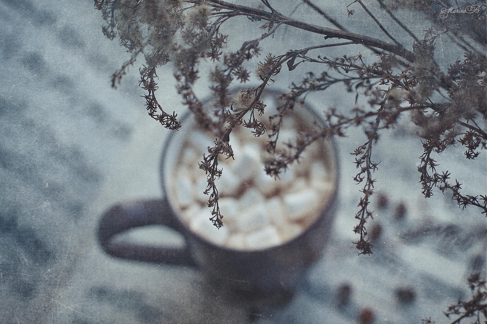 Мелодия апрельского утра / фото Baccardi Marina