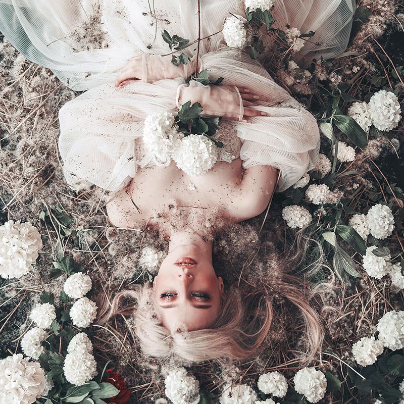 Dandelion Magic / фото Jovana Rikalo