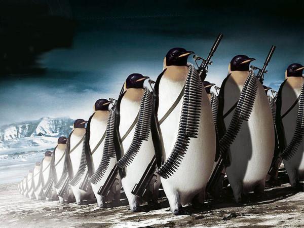 Penguin_Army_Wallpaper