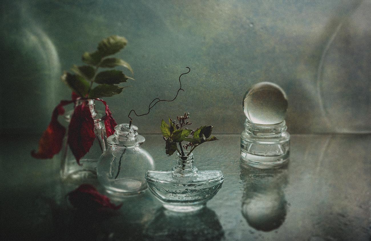Лето / фотограф MVO (Марк Орлов)