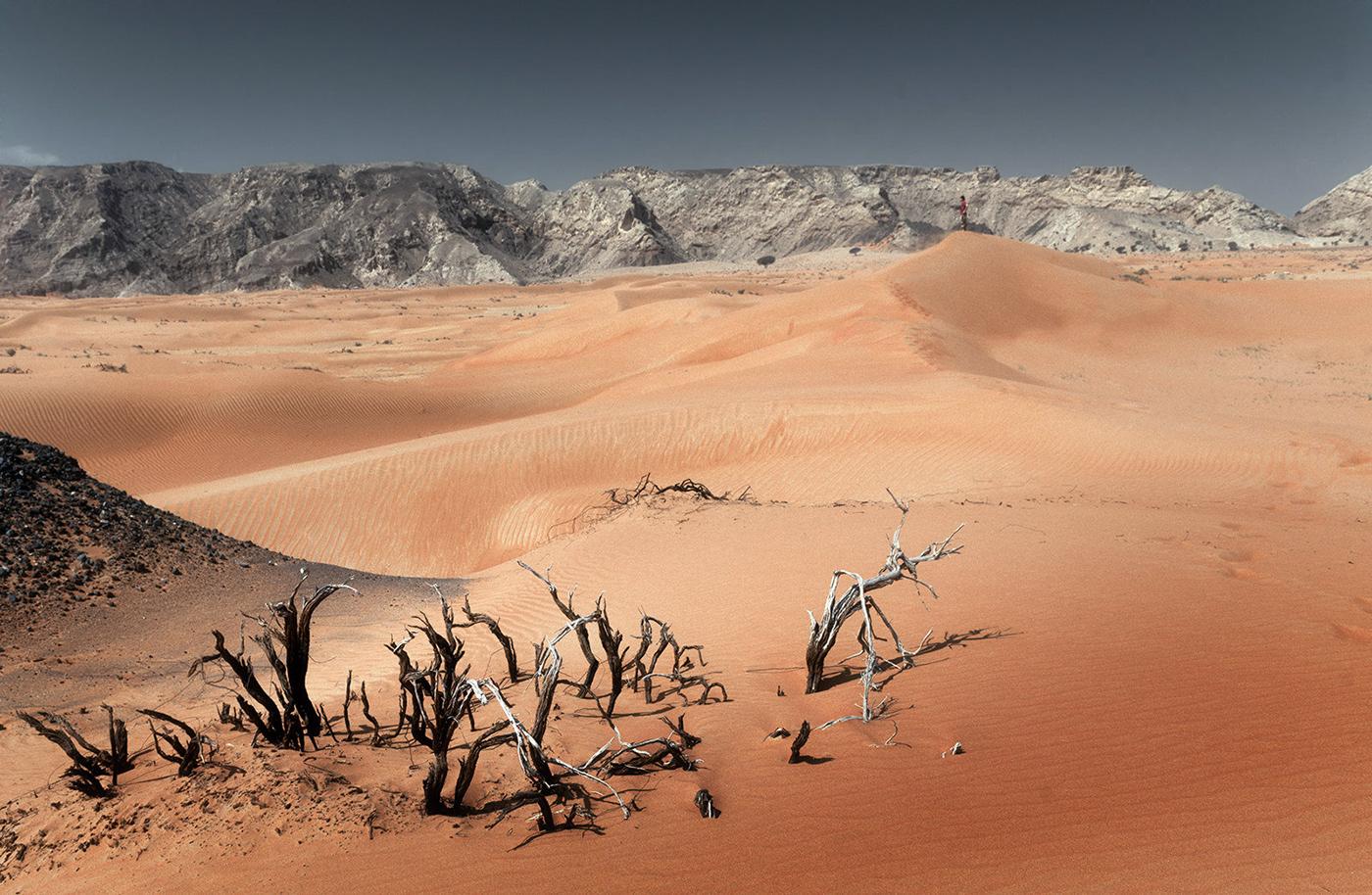 Desert. My Home