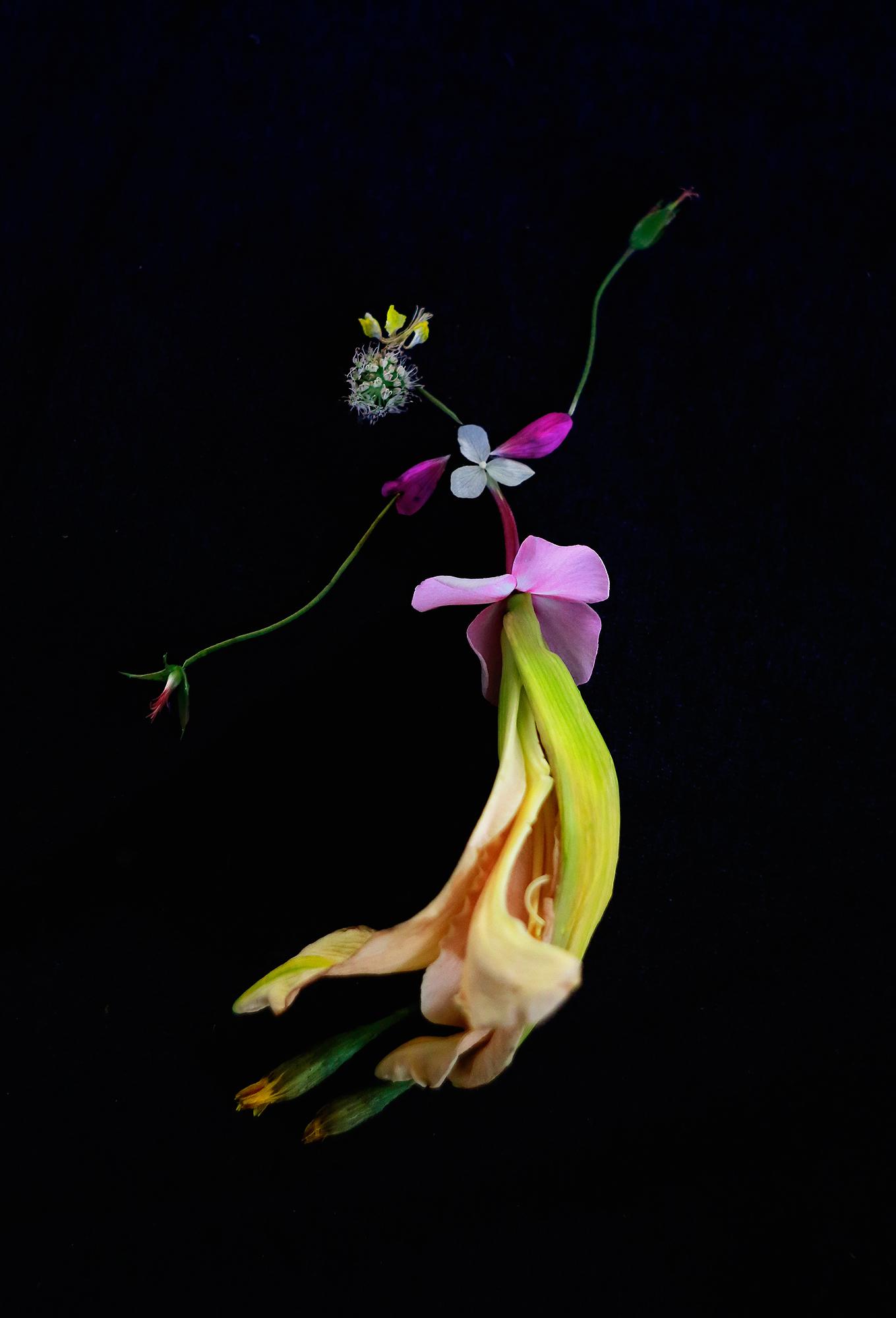 Балерины и гимнастки из цветов