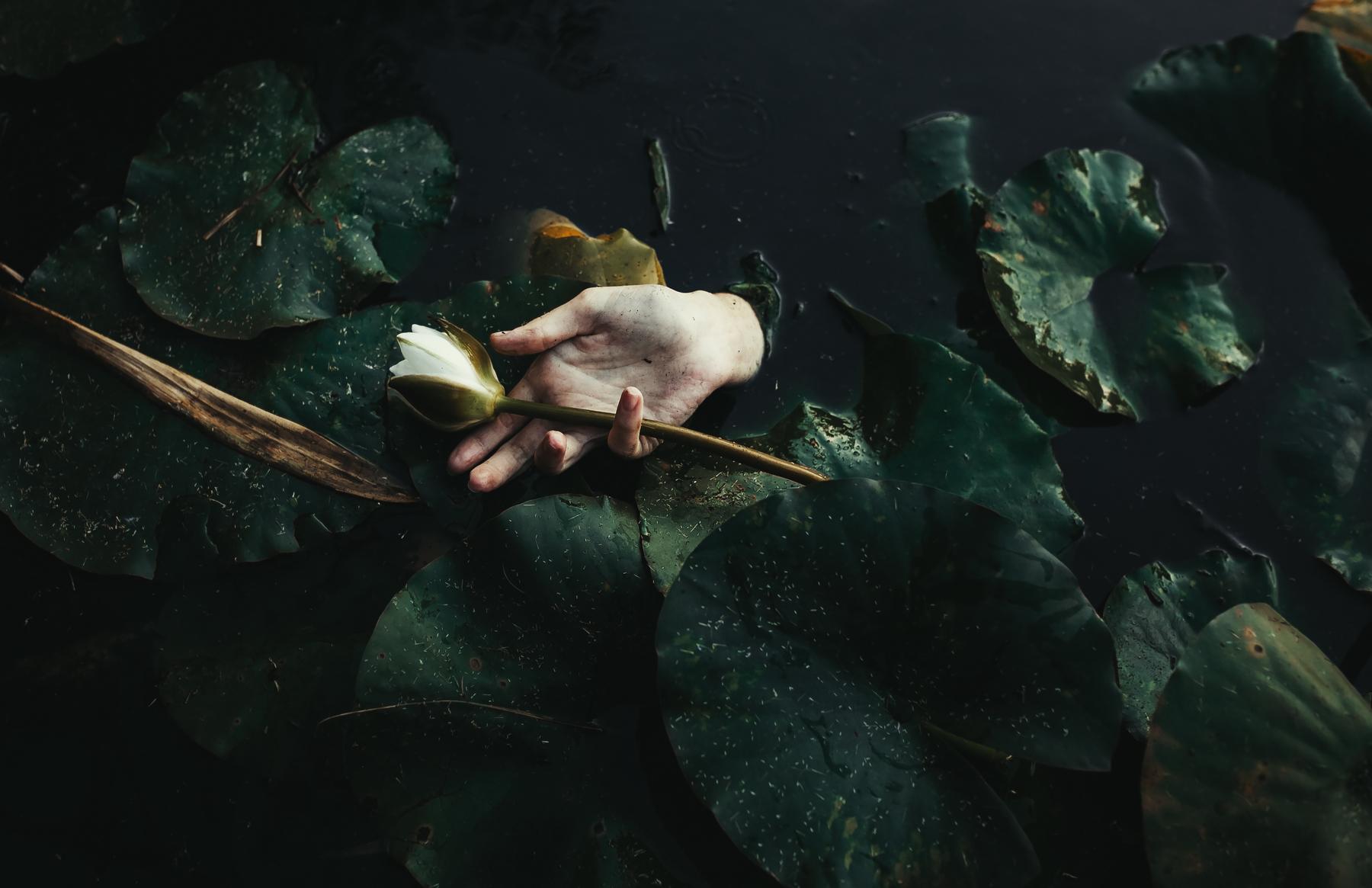 Болото / фотограф Вероника Гергерт