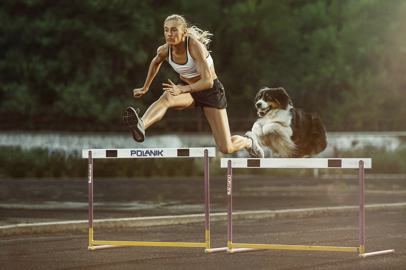 Спортсмены и собаки