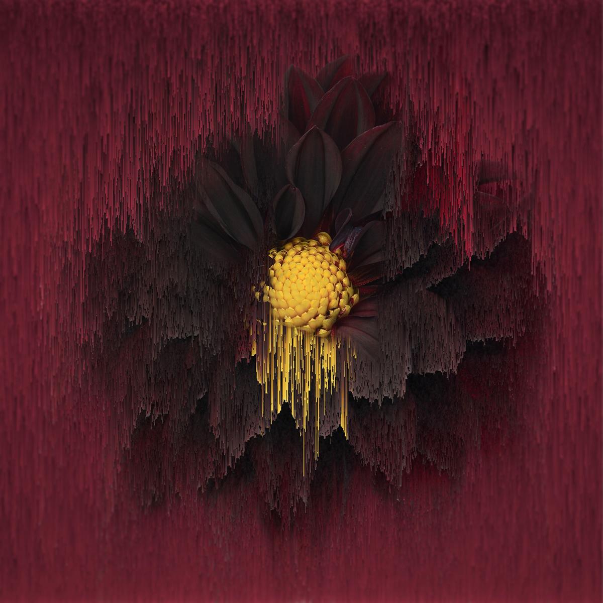 More Flowers / фото Bettina Güber