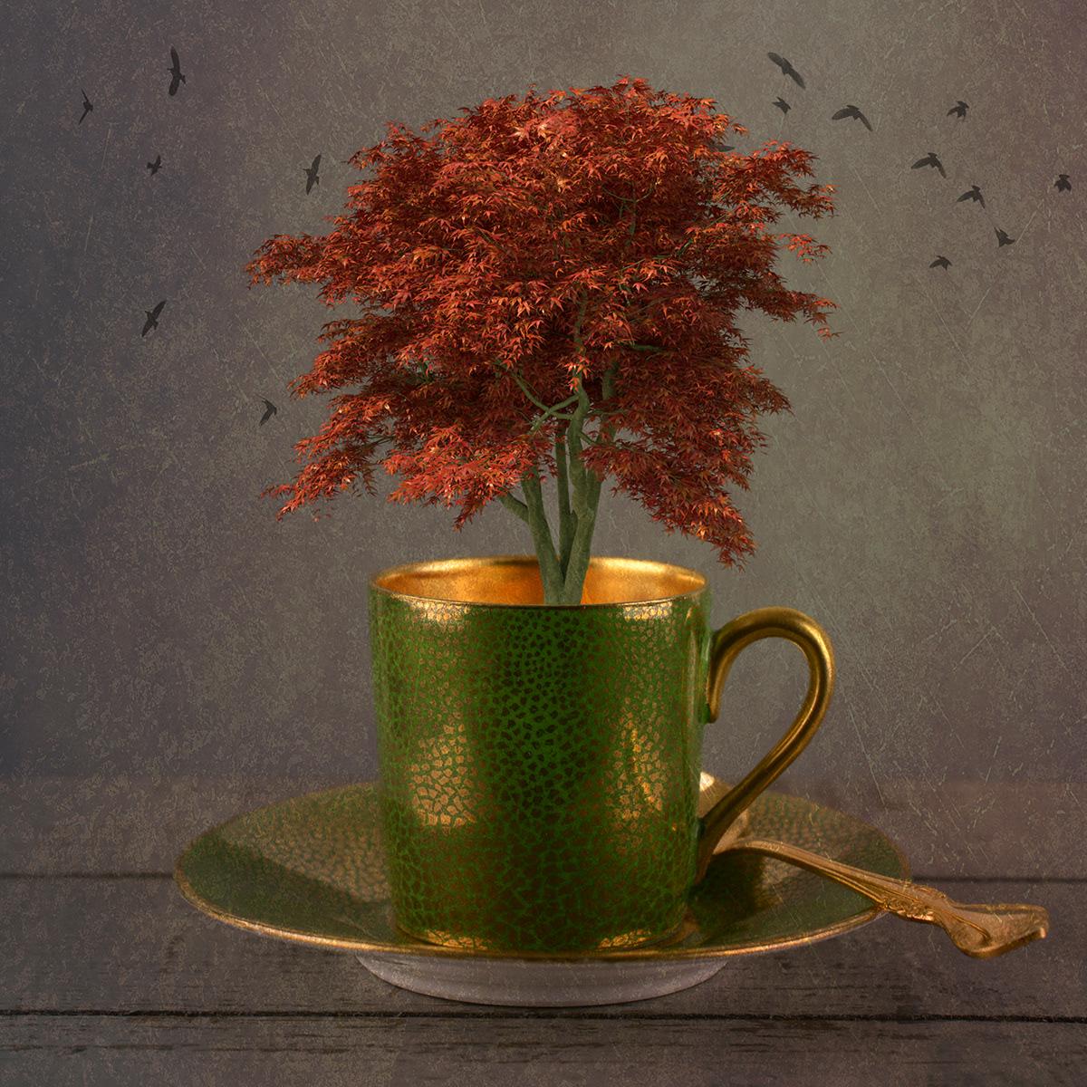 Cups and Mugs / фотограф Bettina Güber
