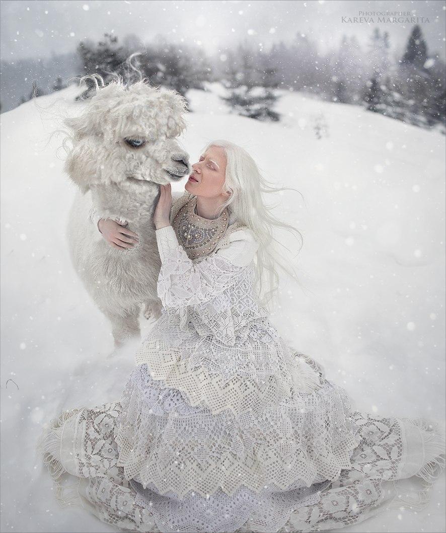 Белая зима / фотограф Маргарита Карева