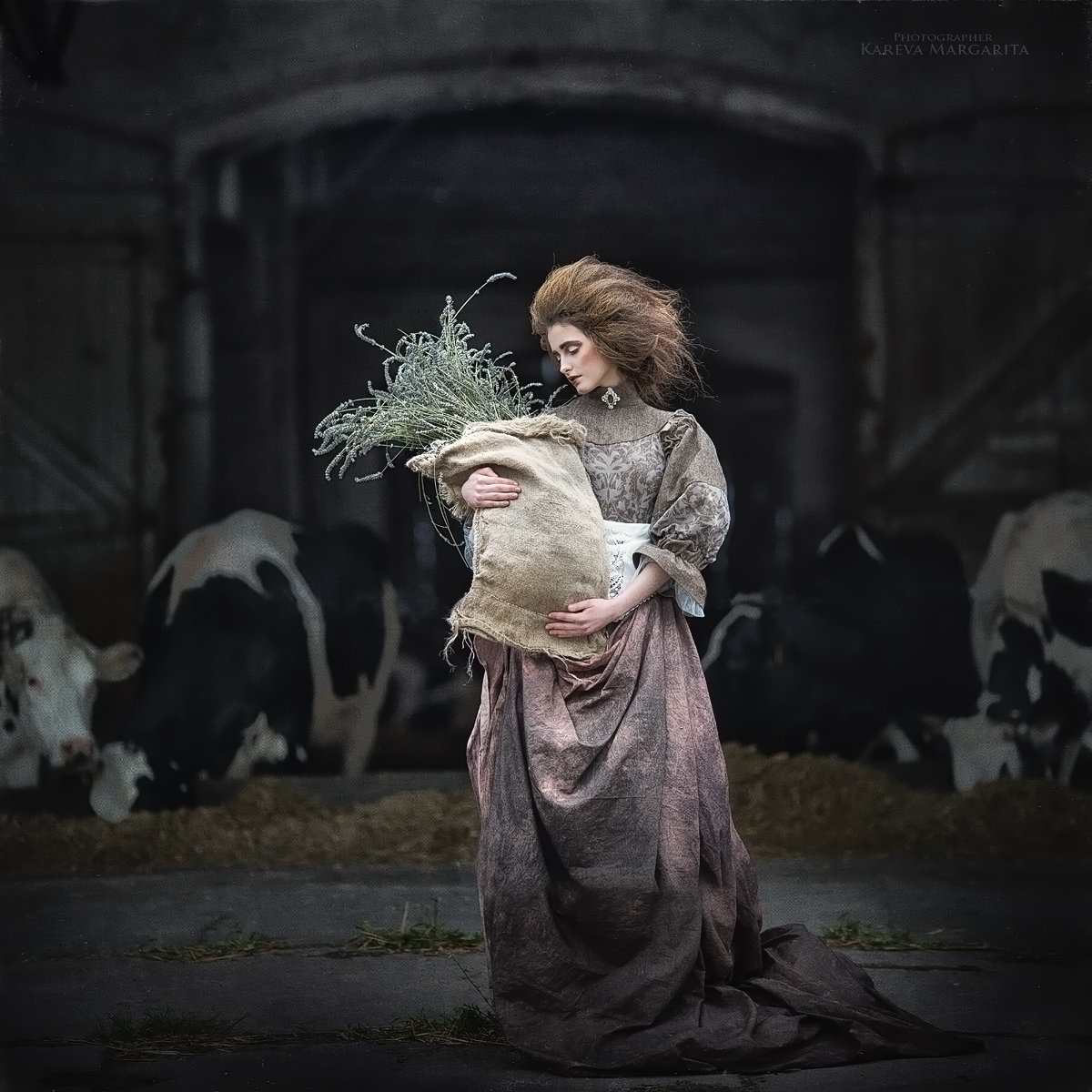 Сухая трава / фотограф Маргарита Карева