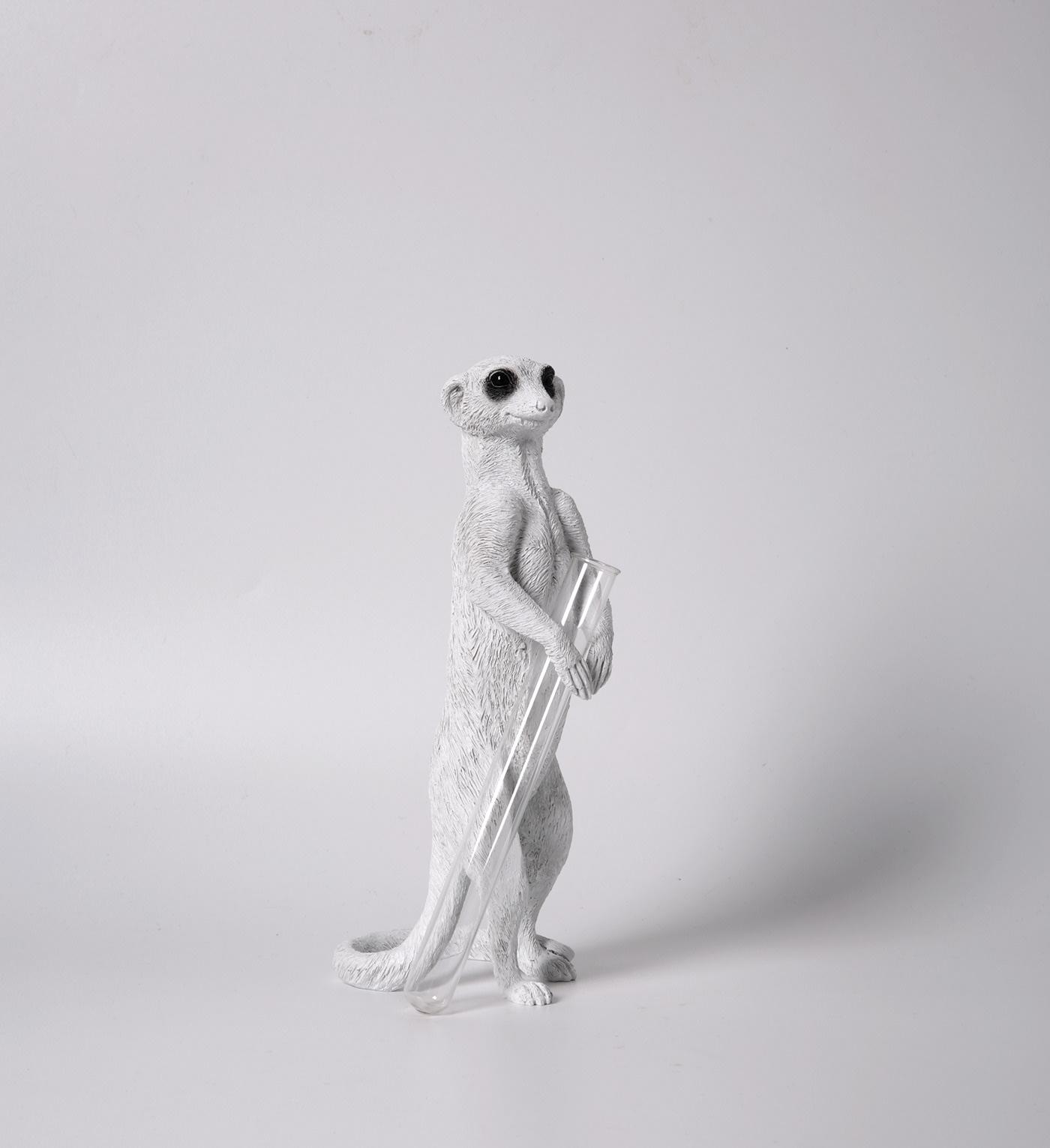Meerkat X VASE