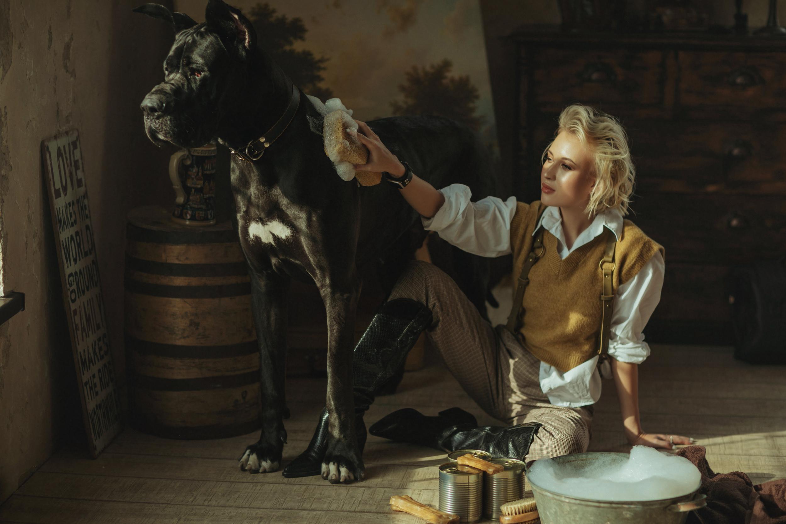 Большая черная собака и девушка в жёлтом
