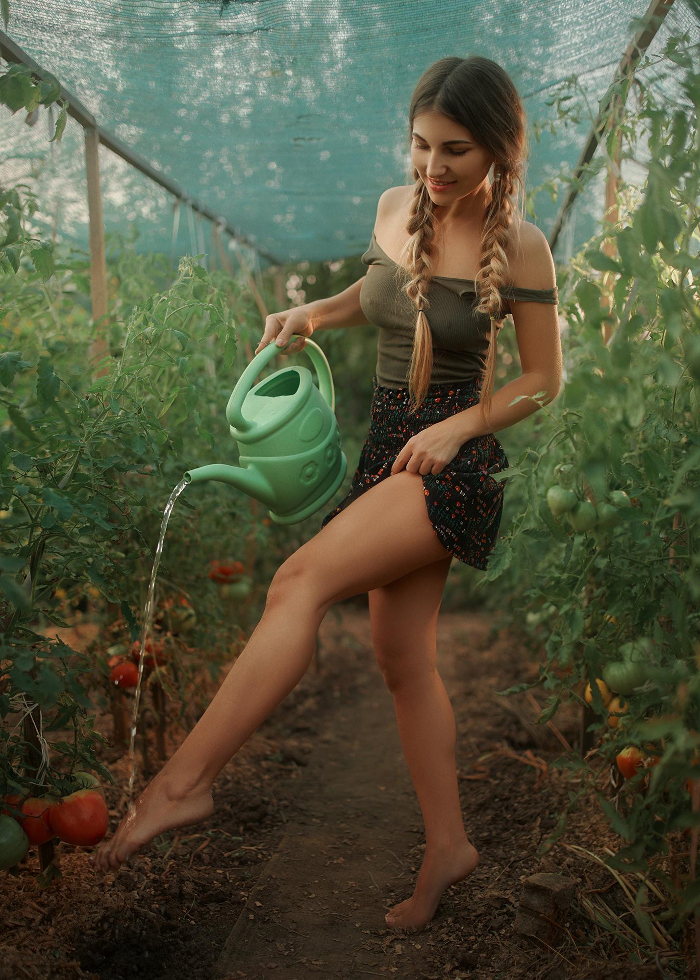 Спелые помидорки