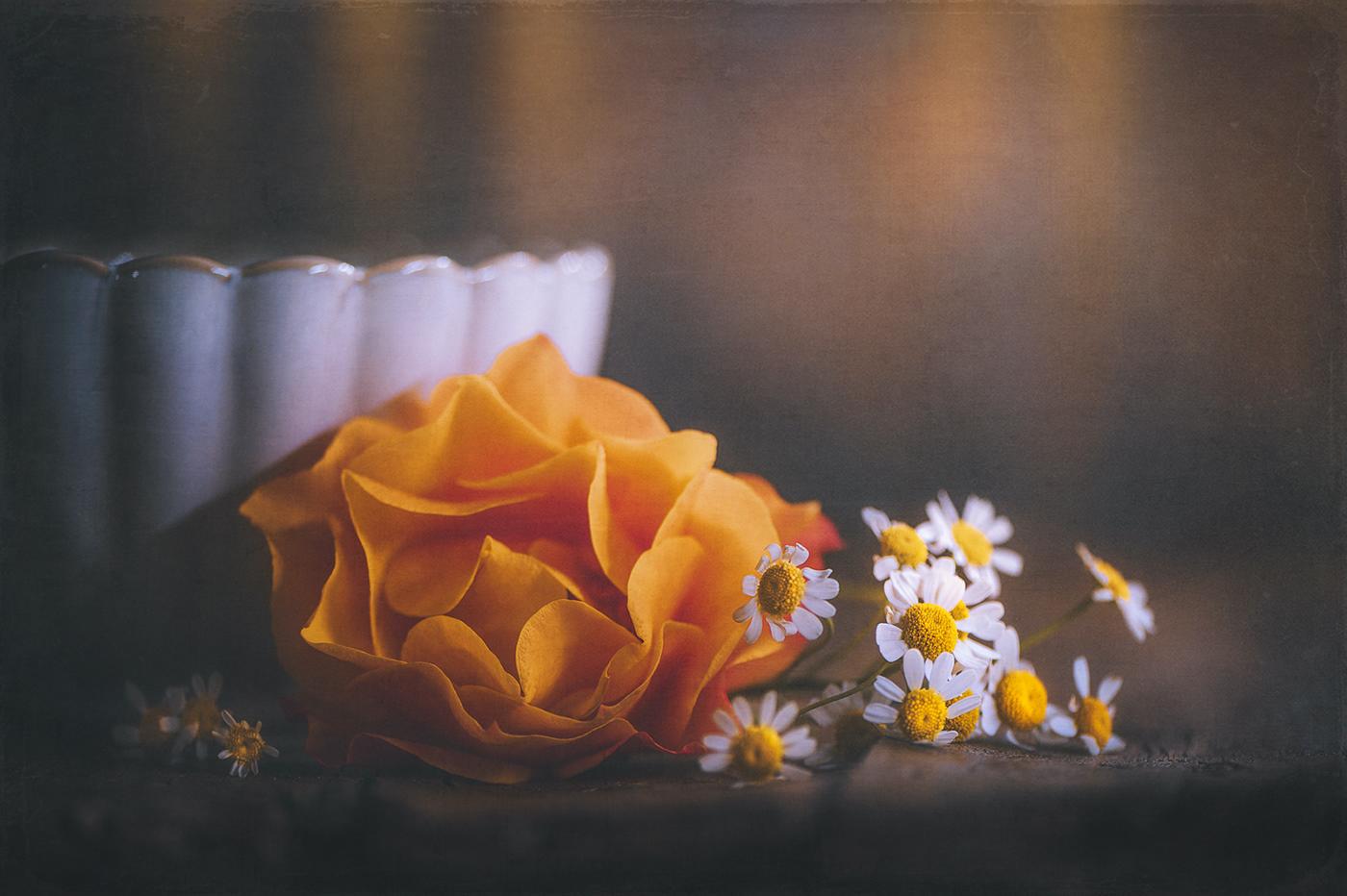 Оранжевый -- самый счастливый цвет Orange si the happiest color