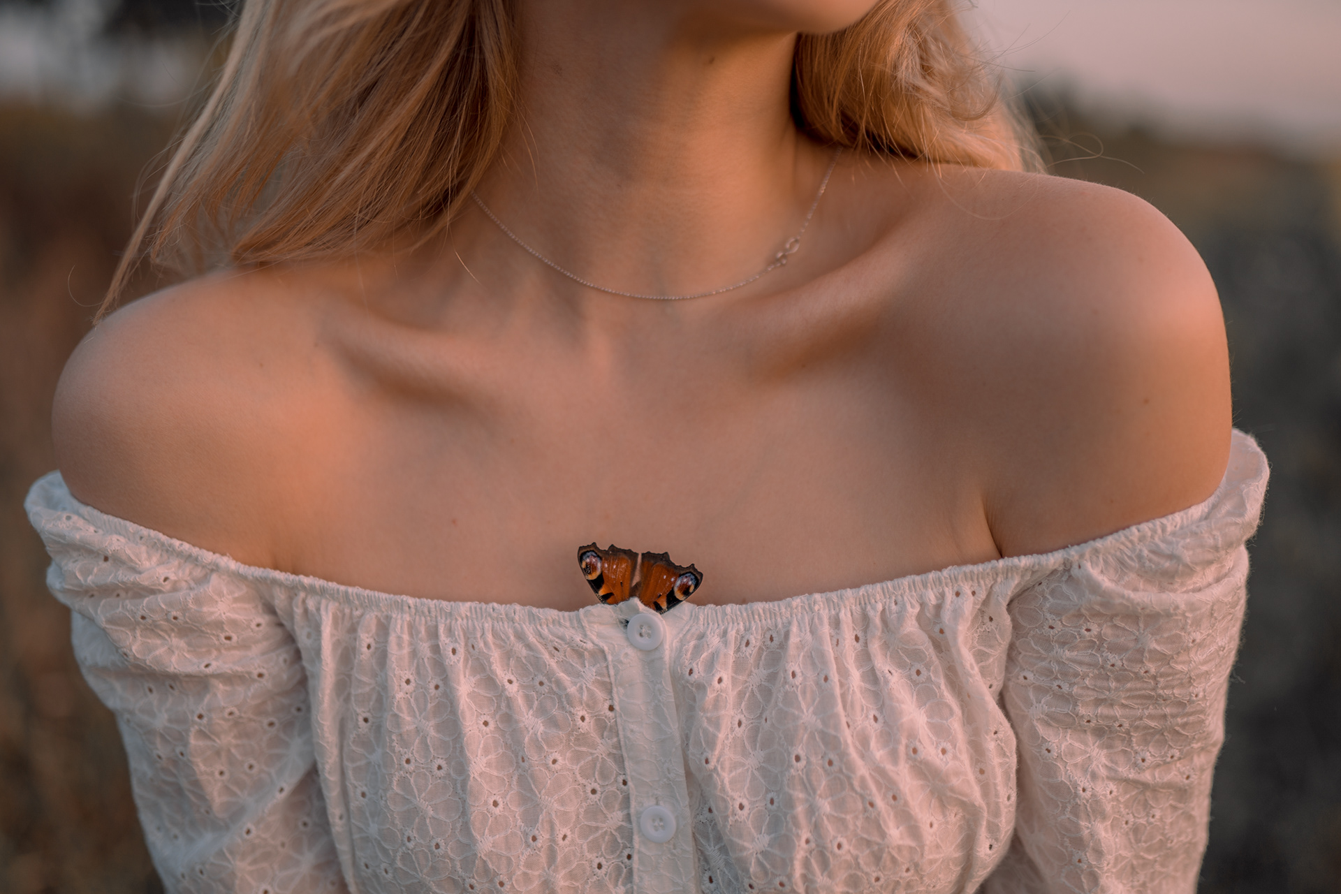 Butterflies live for a day
