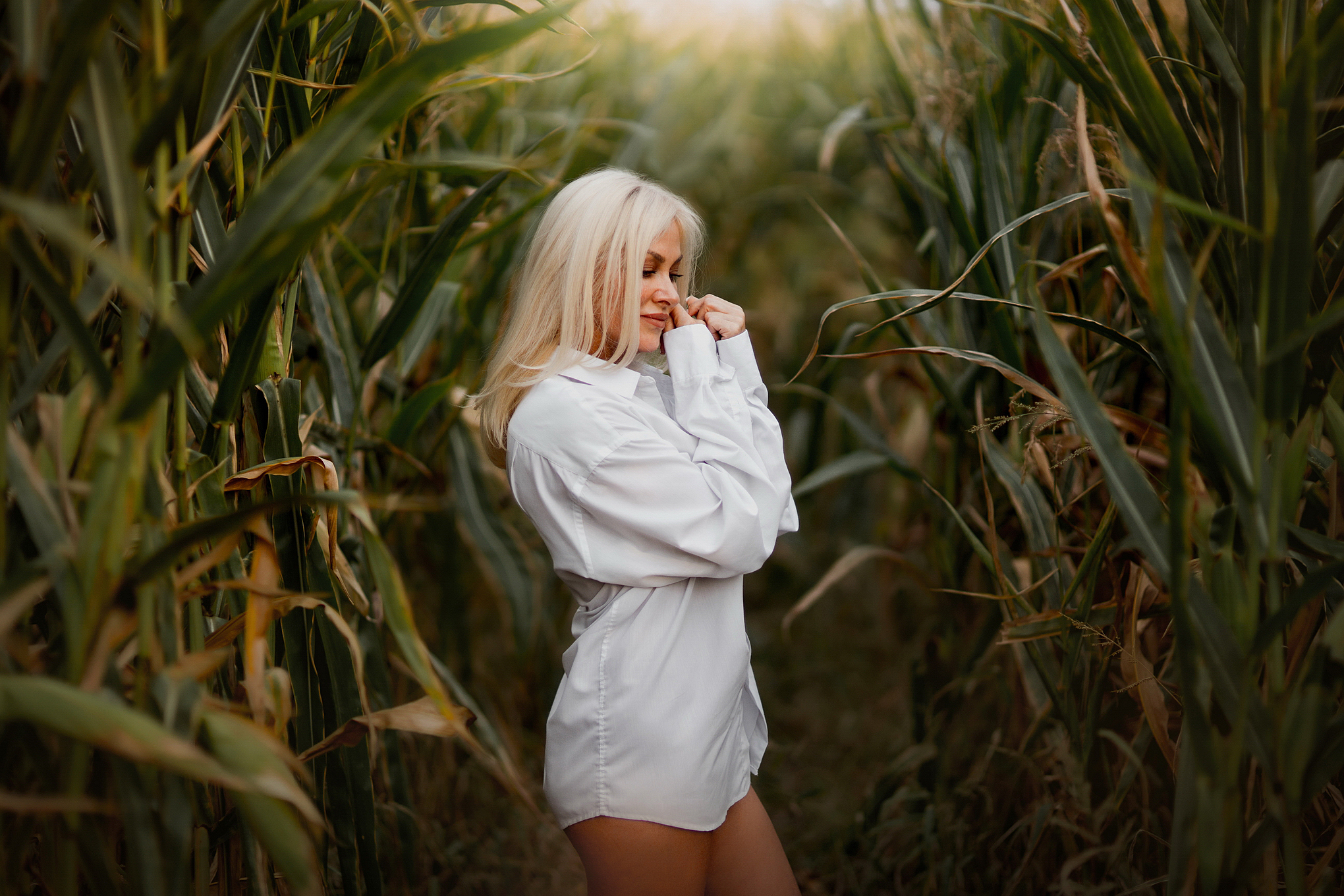 Портреты в кукурузе