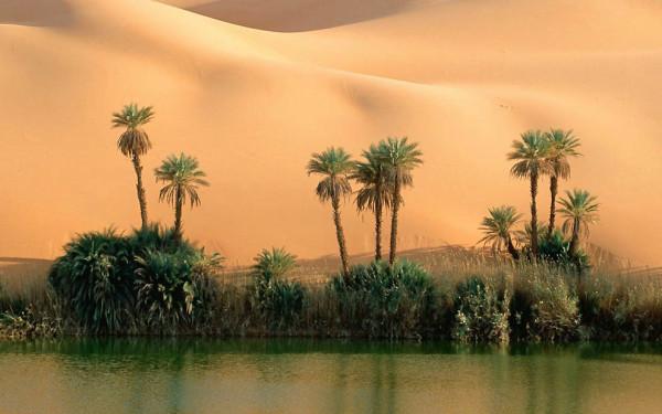 udivitelnie-pustyni-5