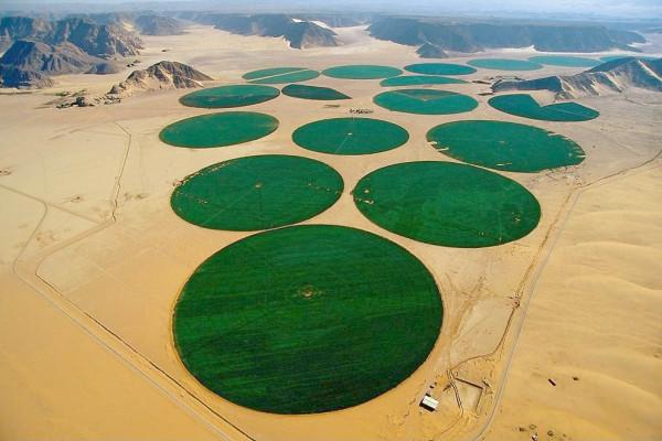udivitelnie-pustyni-8