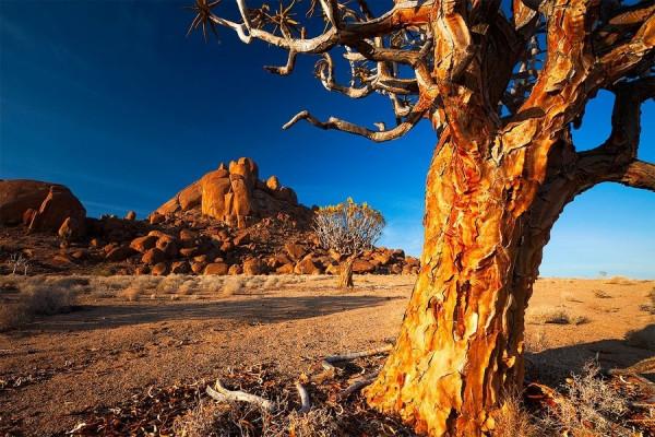 Namibia19
