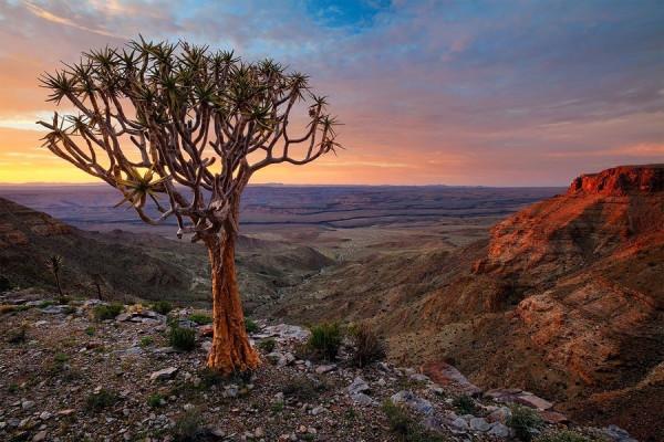 Namibia24
