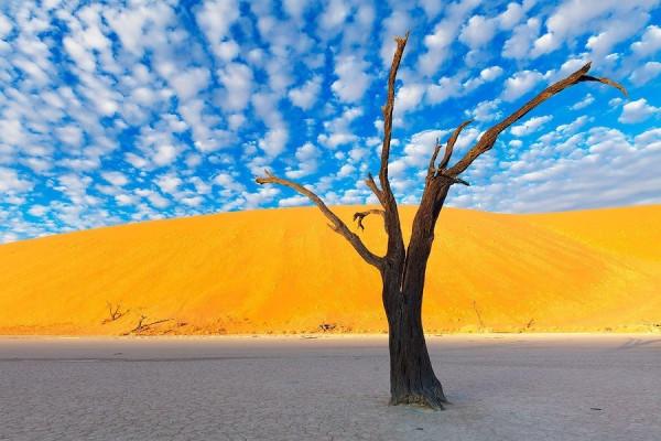 Namibia25