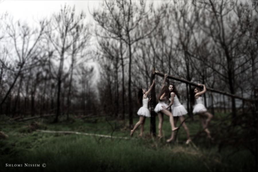 fotograf-Shlomi-Nissim-25