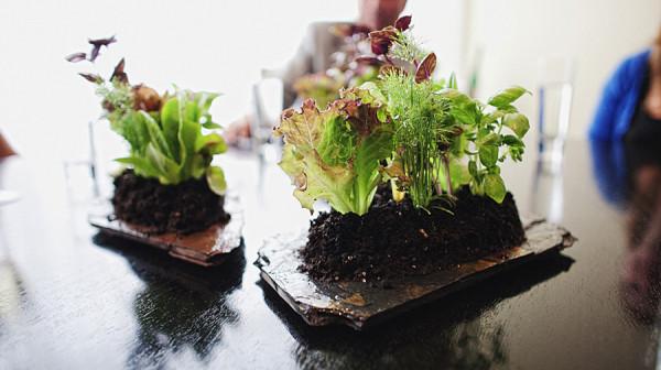 kreativnie-salaty-7