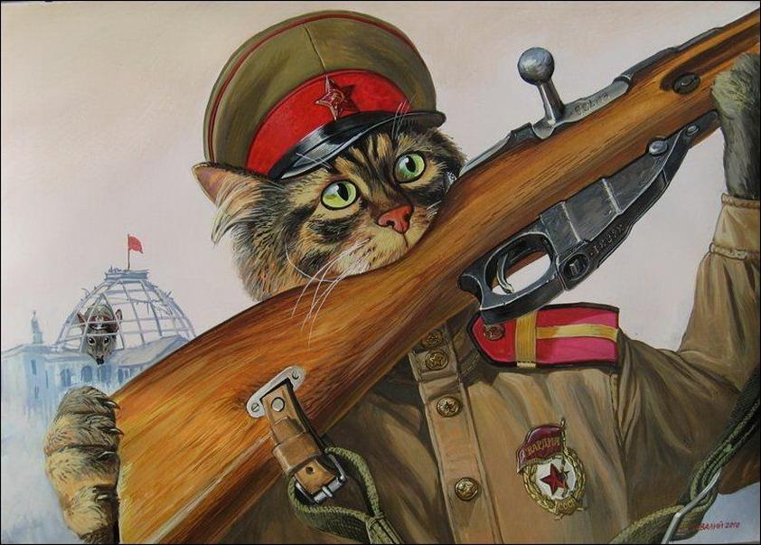 Эпические коты 6