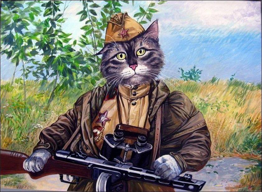 Эпические коты 7