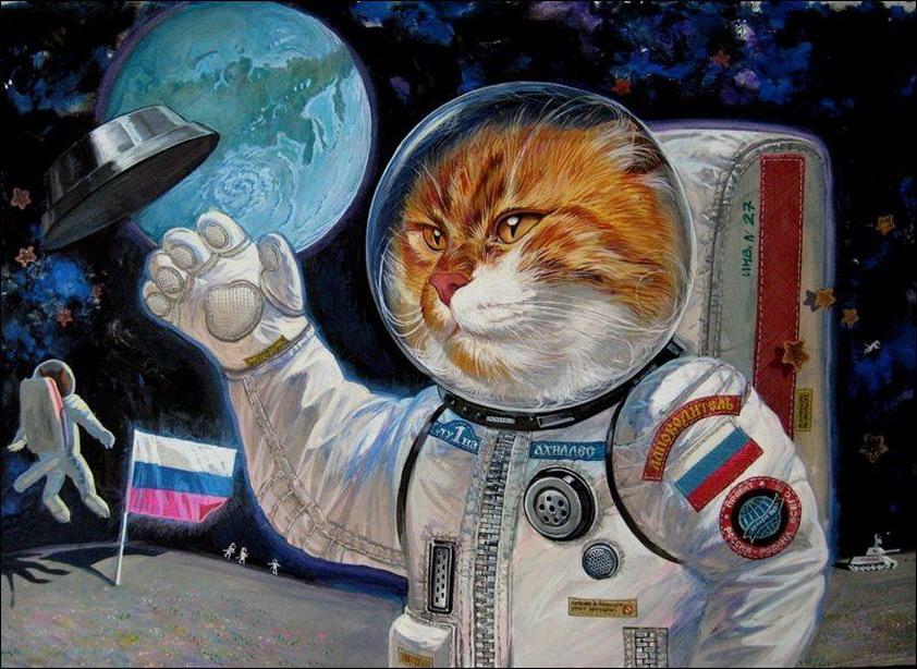 Эпические коты 11