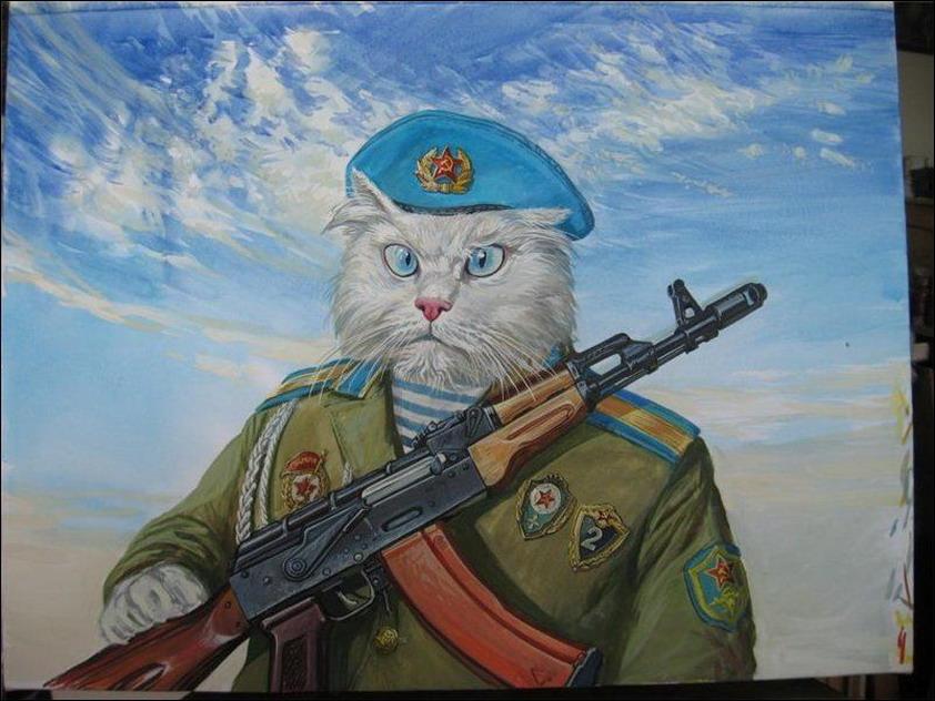 Эпические коты 14