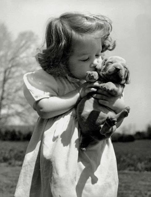 funny kid and a puppy