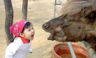 funny kid and animal ass