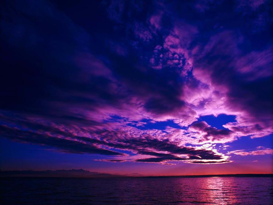 Color_violet_7