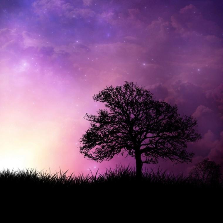 Color_violet_20