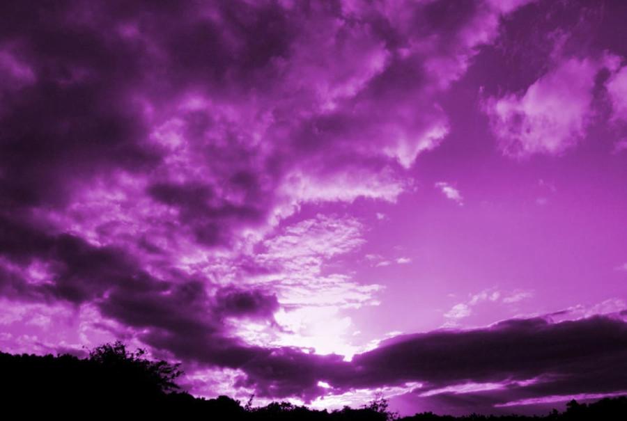 Color_violet_31