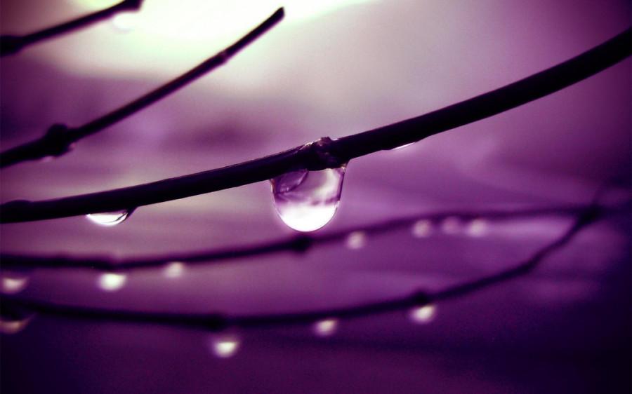 Color_violet_32