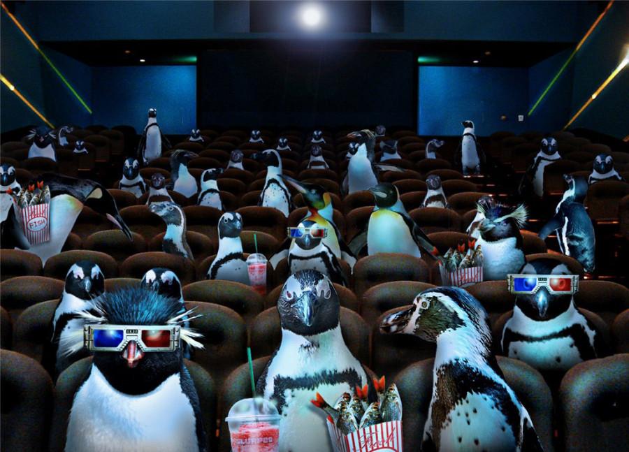 Penguins-01