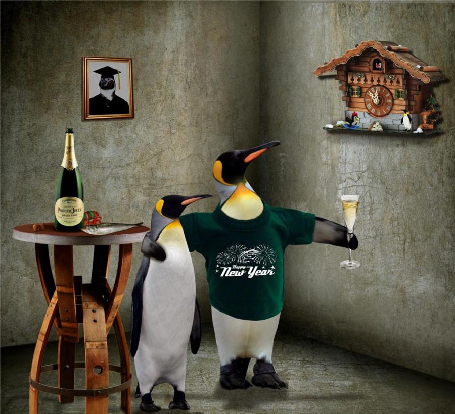 Penguins-11