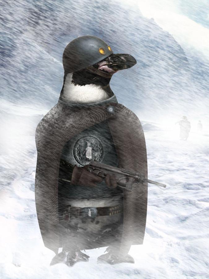 Penguins-19