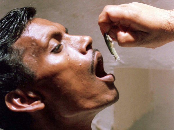people-swallow-live-fish-to-cure-asthma