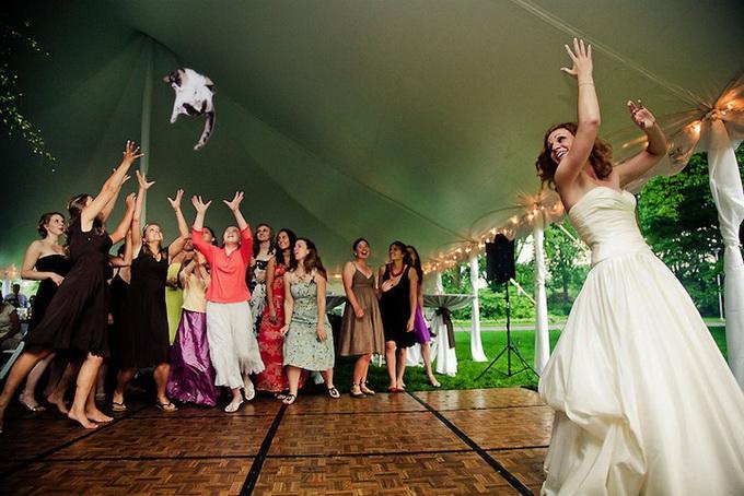bridesthrowingcats1