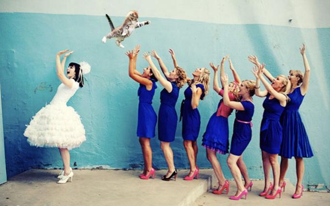bridesthrowingcats6