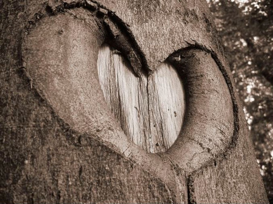Heart_10