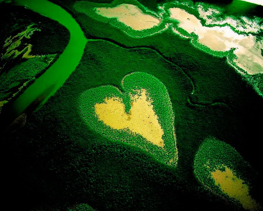 Heart_12