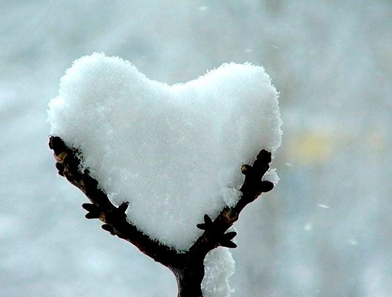 Heart_34