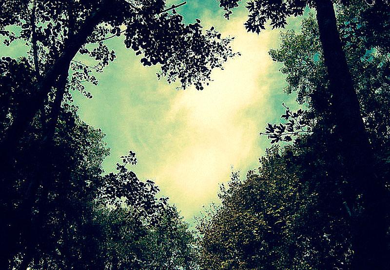 Heart_35