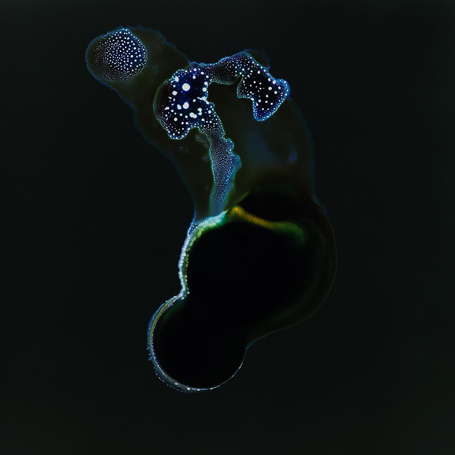 s.schoenfeld_AYCF_Orphiril.Planets